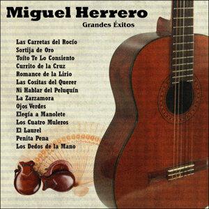Grandes Éxitos: Miguel Herrero