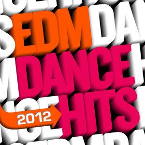 EDM Dance Hits - 2012