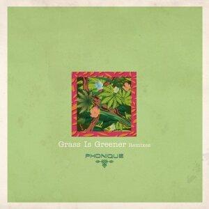 Grass Is Greener Remixes