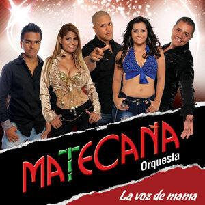 La Voz de Mama - Single