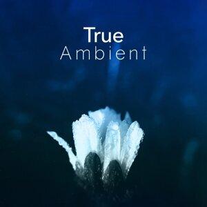 True Ambient