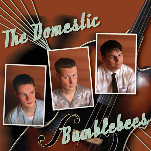 The Domestic Bumblebees