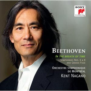 Beethoven: Symphonies Nos. 6 & 8; Grosse Fuge
