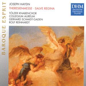 Haydn: Theresienmesse, Salve Regina