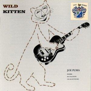 Wild Kitten
