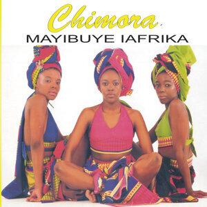 Mayibuye L'afrika