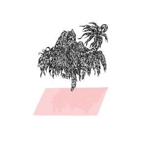 Starfruit EP