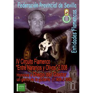 Honores a Diego del Gastor: Un Genio de la Guitarra