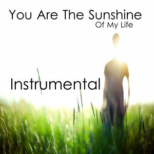 You Are the Sunshine of My Life: Instrumental