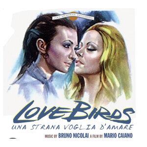 Love Birds - Una strana voglia d'amare