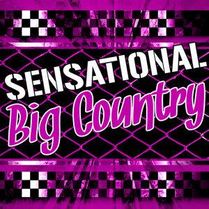 Sensational Big Country (Live)