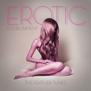 Erotic Environment