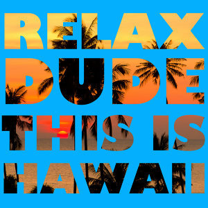 Relax Dude This Is Hawaii