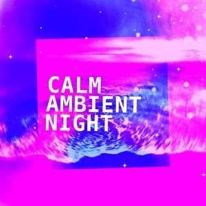 Calm Ambient Night