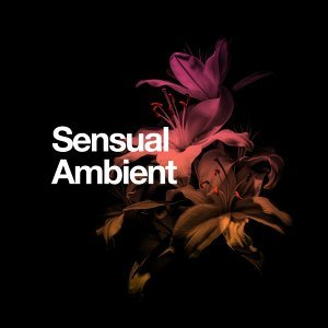 Sensual Ambient