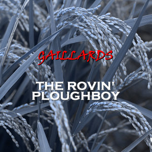 The Rovin' Ploughboy