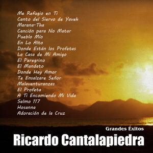 Grandes Éxitos: Ricardo Cantalapiedra