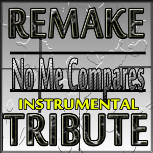 No Me Compares (Instrumental Remake to Alejandro Sanz)