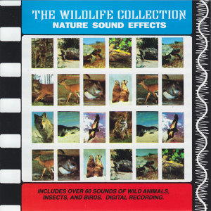 Nature Sound Effects (The Wildlife Collection)