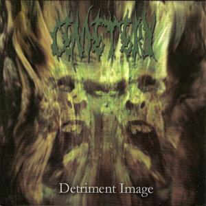 Detriment Image