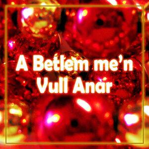 A Betlem Me'n Vull Anar - Single