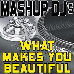 What Makes You Beautiful (Remix Tools for Mash-Ups)