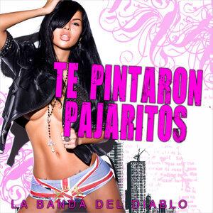 Te Pintaron Pajaritos - Single