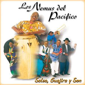 Salsa, Guajira y Son