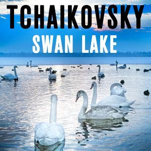 Tchaikovsky Swan Lake