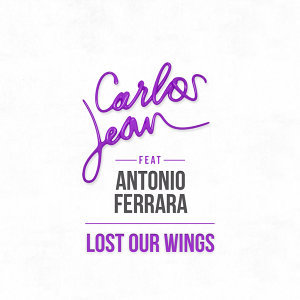 Lost Our Wings