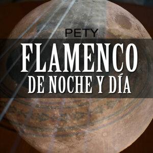 Flamenco de Noche y de Dia