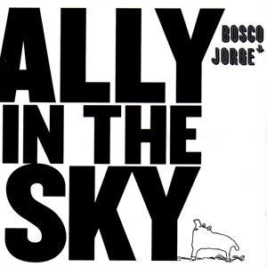 Ally in the Sky