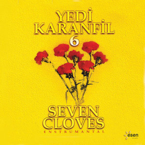 Yedi Karanfil 6