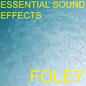 Essential Sound Effects 3 - Foley