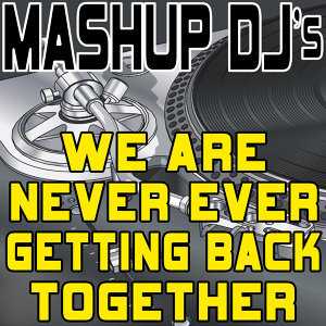 We Are Never Ever Getting Back Together (Remix Tools for Mash-Ups)