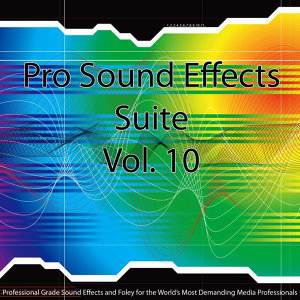 Pro Sound Effects Suite 10 - Sports 4