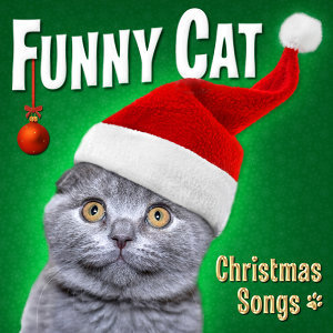 Funny Cat: Christmas Songs