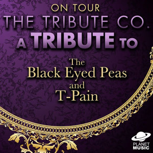 On Tour: A Tribute to the Black Eyed Peas and T-Pain