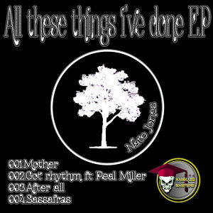 All the Things I Have Done EP