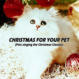 My Pets Christmas
