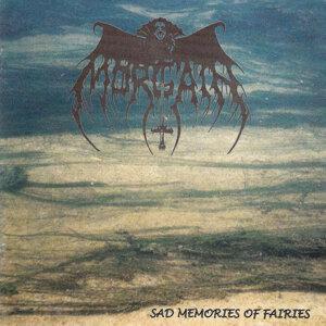 Sad Memories of Fairies