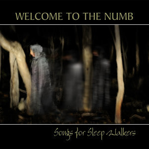 Songs for Sleepwalkers