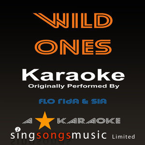 Wild Ones (Originally Performed By Flo Rida Feat Sia) [Karaoke Audio Version]