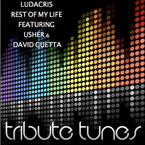 Rest of My Life (Tribute to Ludacris Feat. Usher & David Guetta)