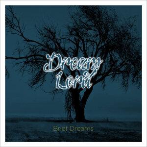 Brief Dreams