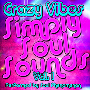 Simply Soul Sounds Vol. 1: Crazy Vibes