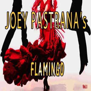Joey Pastrana's Flamingo, Vol. 1