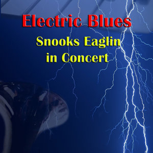 Snooks Eaglin in Concert
