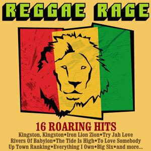Reggae Rage - 16 Roaring Hits