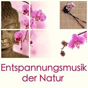 Entspannungsmusik der Natur: Wasser Sound zum Entspannen, für Wellness, Meditation, Yoga, Massage